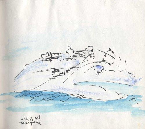 Pg 3: Urban Dolphin
